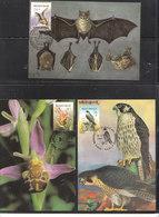 2244/6 Buzin - Ophrys Abeille - Petit Rhinolophe - Faucon Pélerin - 1985-.. Birds (Buzin)