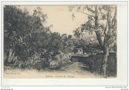 Carte De Bormes ( Les Mimosas Je Pense )  ( Recto Verso ) - Bormes-les-Mimosas