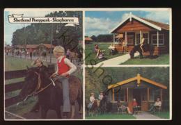 Slagharen - Shetland Ponypark [AA47-0.254 - Netherlands