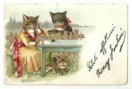 "6747 "" MAMMA GATTA SCRIVE "" -CARTOLINA POSTALE  SPED. 1912 - Dressed Animals"