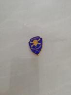 13654   INSIGNE MILITAIRE  FIA - Badges & Ribbons
