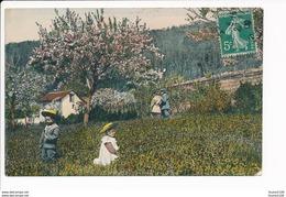 Carte Sans Titre à Identifier Enfants / Cerisier (  Dr  Trenkler Co Leipzig 1907 Brn 5 ) - Postcards