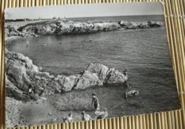 44  -  BATZ SUR MER BAIE DE DERWEN  @ CARTE BON ETAT VUE RECTO/VERSO AVEC BORDS - Batz-sur-Mer (Bourg De B.)