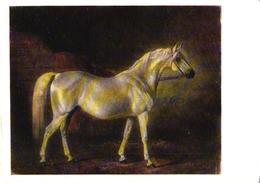 N.E.Svertskov Painting, White Horse, 1973 - Chevaux