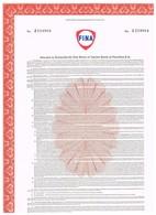 Titre Ancien - FINA  - Warrant Permettant De Souscrire à Des Actions Petrofina - Oil