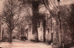 Richerenches (Vaucluse) Cours Ouest, 2ème Vue - Edition Aux Dix Mille Articles - Carte N° 351 - Francia