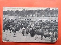 CPA (62) Pernes En Artois.Le Mont Un Jour De Marché.  (N.1243) - Autres Communes
