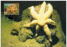 Alderney : CM Carte Maximum WWF Vie Marine Etoile De Mer Luidia Ciliaris Starfish Siebenarmiger Seestern - Alderney