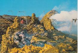 """ETNA - """"HORNITOS"""" - ERUZIONE 1983 - ANIMATA - IMPIANTI DI RISALITA - NON VIAGGIATA - Italia"""