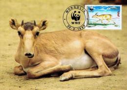 Saiga WWF Fdc Pmk 1995 MONGOLIA Animals Animaux Faune Carte Maximum Card Maxicard - Mongolie