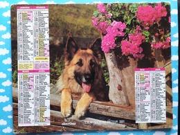 CALENDRIER DU FACTEUR ALMANACH CHIEN 1991 - Calendriers