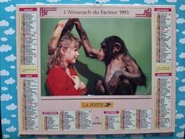 CALENDRIER DU FACTEUR ALMANACH CHIEN SINGE ET ENFANT 1993 - Calendriers