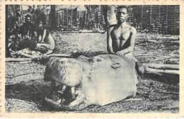 CONGO : Tête D'Hippopotame -  CPA - Afrique Noire - Black Africa - Congo Francese - Altri