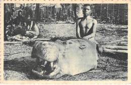 CONGO : Tête D'Hippopotame -  CPA - Afrique Noire - Black Africa - French Congo - Other