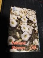FALKLAND ISLANDS   20  Pound FALKLAND FLOWERS   New  Logo C&W *418 ** MINT - Islas Malvinas