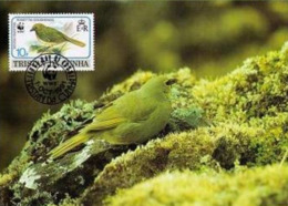 (WWF-118) Maxi Maximum Cards / Maxicard W.W.F. Tristan Da Cunha - Gough Bunting 1991 - Cartes Postales