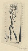 Nieuwjaarskaart 1952 Dita En Wim Zwiers - Wim Zwiers (1922-2019) Gesigneerde Ets - Prenten & Gravure