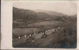 !  Fotokarte Aus Rumänien, Romania, Photo, 1917, Straße Zwischen Campina Und Predeal, Rotes Kreuz, Red Cross, Militaria - Roumanie