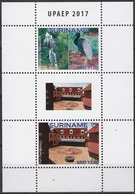 Surinam Suriname 2017.   Fauna. Tourism. Waterfalls. Birds. Architecture. - Suriname
