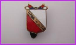 Teramo Calcio S.p.a Distintivi FootBall Soccer Pins Spilla Italy Teramo Piedino MODERNO - Football