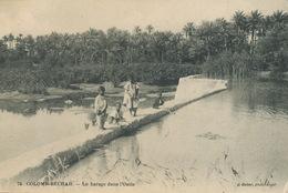 Colomb Bechar Barrage Dans  L' Oasis Geiser Enfants Arabes Jouant - Bechar (Colomb Béchar)