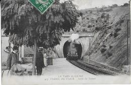VIADUC DU VIAUR ( Tarn Illustré ) : Sortie Du Tunnel Du Train Et La Gare - Zonder Classificatie