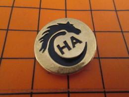 818A Pin's Pins / Beau Et Rare / THEME : ANIMAUX / CHEVAL NOIR CHA CLUB HIPPIQUE - Animales