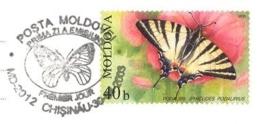 6230  Papillon: Oblitération 1er Jour Moldavie, 2003 -  Butterfly FDCancel From Moldova - Papillons