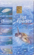 Télécarte 50U, Tirage 3000, Îles Eparses De L'Océan Indien 2007 (Tortue, Différentes îles) - TAAF - Franz. Süd- Und Antarktisgebiete