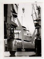 C3262/ Hamburg Hafen Terminal Foto 16,5 X 12,5 Cm Ca.1965 - Alte Papiere