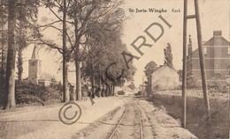Postkaart-Carte Postale TIELT-WINGE - St- Joris-Winghe - Kerk (B270) - Tienen