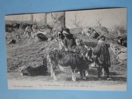 """AU PAYS CREUSOIS -- Chèvres à Poils Longs - """" Eh ! La ! La ! Notro Chiébro Qué Crévo """"- ANIMEE - Cpa """"précurseur"""" 1903 - Breeding"""