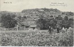 1915 - Slavonski Brod   Brod Na Savi,  Gute Zustand, 2 Scan - Croatia
