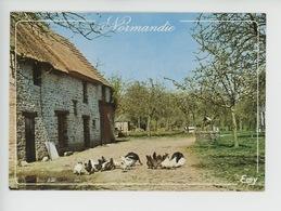 Normandie : Cour De Ferme (basse-cour) La Normandie Pittoresque - Basse-Normandie