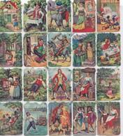 Chicorée MOKTA WILLIOT, Planche De Découpis Gaufrés, 32 Miniatures Nos Découpées, - Découpis