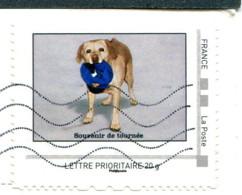 """Montimbreamoi """"Souvenir De Tournée"""" - Lettre Prioritaire 20g Au Verso D'une Carte Postale - Personalized Stamps (MonTimbraMoi)"""