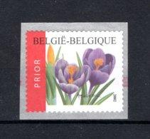 R105 MNH 2002 Bloemen Crocus Vernus - Coil Stamps