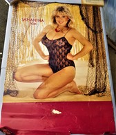 Rare Grande Affiche Samantha Fox 97 X 68 - Posters