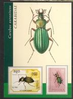 République Tchèque 2003 N° 289 O Insectes, Coléoptères, Carabus Auronitens, Carabe, Téléphone, Ordinateur, Kabourek - Lettres & Documents