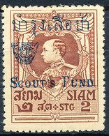 Stamp Thailand 1920 Overprint   Mint Lot80 - Thailand