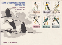 1977 Rhodesia Birds Oiseaux  First Day Cover - Passereaux