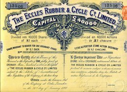 The ECCLES RUBBER & CYCLE Company, Limited - Tourism