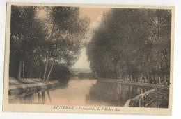 89/CPA - Auxerre - Promenade De L'Arbre Sec - Auxerre