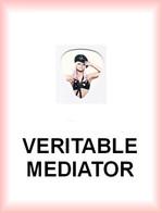 LADY GAGA MEDIATOR Medium PLECTRUM Guitar Pick (bustier) - Accessories & Sleeves