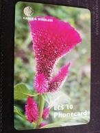 ANTIGUA  $10,- CHIPCARD FLOWER CELOSIA    Fine Used Card  ** 428 ** - Antigua And Barbuda