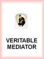 IRON MAIDEN MEDIATOR Medium PLECTRUM Guitar Pick (accroupi) - Accessories & Sleeves