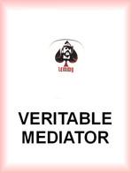MOTORHEAD MEDIATOR Medium PLECTRUM Guitar Pick MOTÖRHEAD LEMMY - Accessories & Sleeves