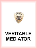 MOTORHEAD MEDIATOR Medium PLECTRUM Guitar Pick MOTÖRHEAD AFTERSHOCK - Accessories & Sleeves
