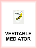 VELVET UNDERGROUND MEDIATOR Medium PLECTRUM Guitar Pick (banane) - Accessories & Sleeves