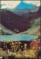 °°° 19191 - VENEZUELA - LOS ANDES - LAGUNA NEGRA - 1974 °°° - Venezuela